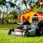 How Often Should I Mow My Lawn