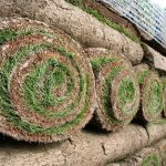 When is the best time to lay a new lawn